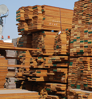 Burma Teak Wood Suppliers - WBT Group